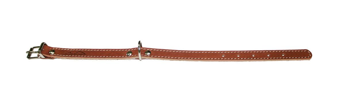 ошейник 16п коньячный о16пк (26 - 34 см x 16 мм) Kormberi.ru магазин товаров для ваших животных