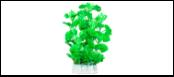 Уют Растение аквариумное 24 см, Щитолистник зелено-желтый ВК505 Kormberi.ru магазин товаров для ваших животных