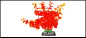 Уют Растение аквариумное 11 см, Бакопа оранжевая 0,055кг ВК211 Kormberi.ru магазин товаров для ваших животных