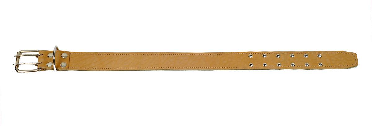 ошейник 45 брезент+кожа/д о45бк/д (61-75 см х 45 мм) Kormberi.ru магазин товаров для ваших животных