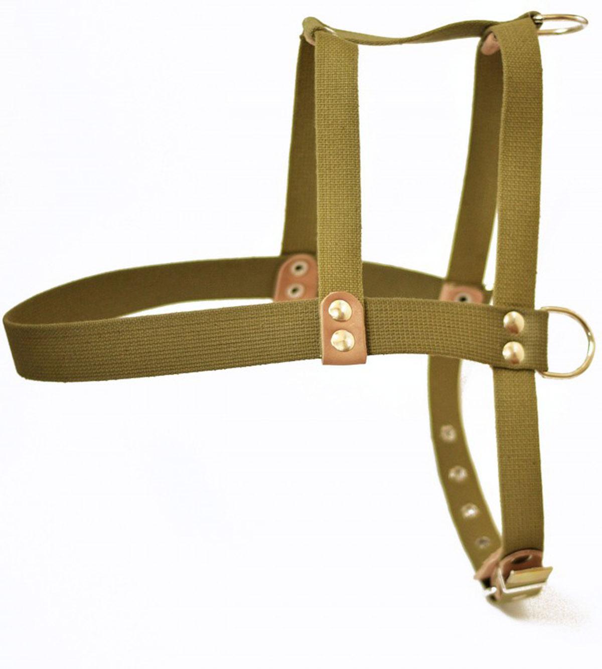 шлея брез. №2езд ш35бр2 (63-74 см) Kormberi.ru магазин товаров для ваших животных