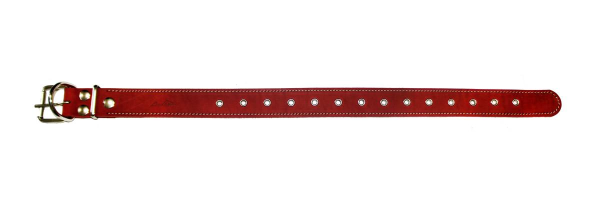 ошейник 35 универсальный красный о35ункр (макс. 60 см х 35 мм) Kormberi.ru магазин товаров для ваших животных