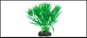Уют Растение аквариумное 11 см, Гетерантера зеленая 0,055кг ВК209 Kormberi.ru магазин товаров для ваших животных