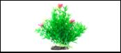 Уют Растение аквариумное 12 см, Гемиантус с розовыми цветами 0,1кг ВК303 Kormberi.ru магазин товаров для ваших животных