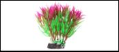 Уют Растение аквариумное 12 см, Гетерантера зелено-фиолетовая 0,1кг ВК318 Kormberi.ru магазин товаров для ваших животных