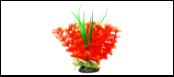 Уют Растение аквариумное 12 см, Амбулия оранжевая с кружевными листьями 0,1кг ВК314 Kormberi.ru магазин товаров для ваших животных