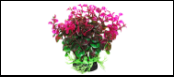 Уют Растение аквариумное 12 см, Бакопа зелено-фиолетовая 0,1кг ВК309 Kormberi.ru магазин товаров для ваших животных