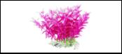 Уют Растение аквариумное 12 см, Людвигия фиолетовая 0,1кг ВК316 Kormberi.ru магазин товаров для ваших животных