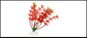 Уют Растение аквариумное 10 см, Амбулия красная 0,02кг ВК111 Kormberi.ru магазин товаров для ваших животных
