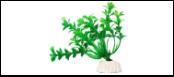 Уют Растение аквариумное 10 см, Гемиантус зеленый 0,02кг ВК102 Kormberi.ru магазин товаров для ваших животных