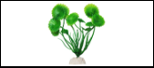 Уют Растение аквариумное 10 см, Шитолистник зеленый 0,02кг ВК100 Kormberi.ru магазин товаров для ваших животных