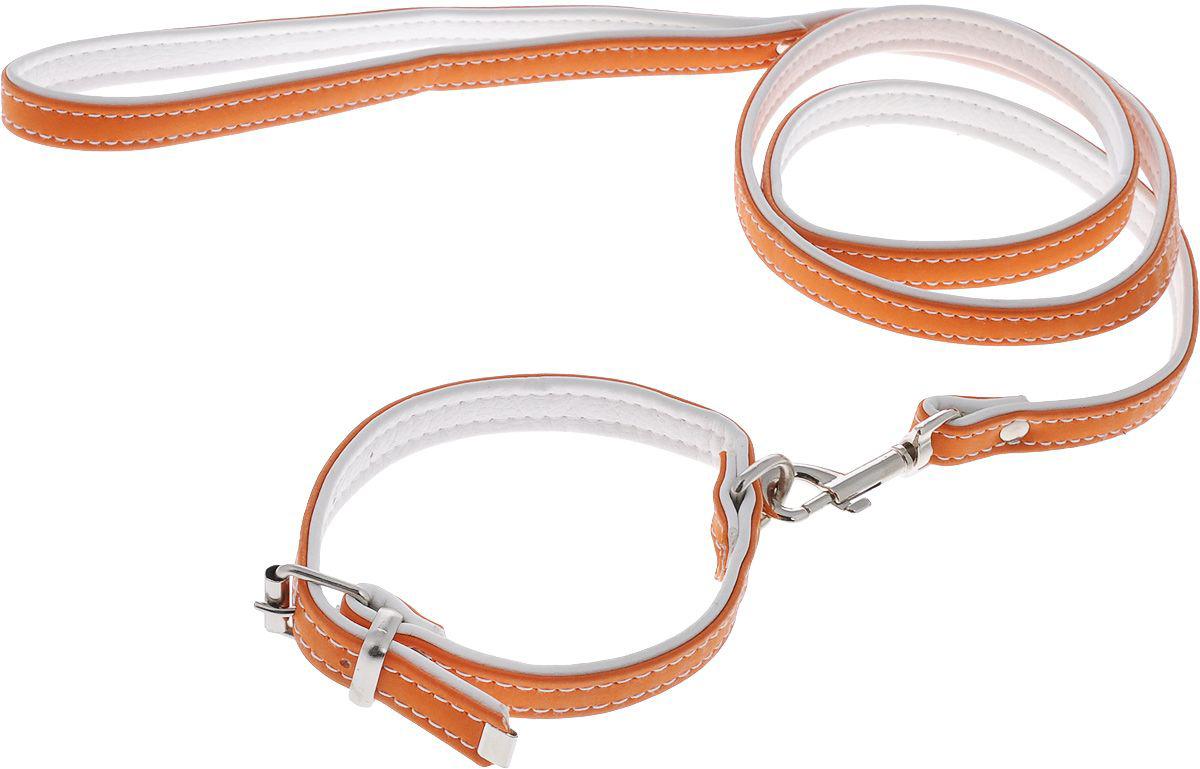 комплект 37(пов.12+ош.15) оранжевый кт37о Kormberi.ru магазин товаров для ваших животных
