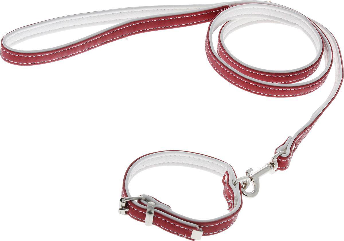 комплект 32(пов.12+ош.12) красный кт32к Kormberi.ru магазин товаров для ваших животных