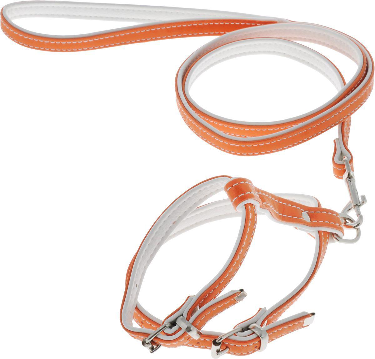 комплект 12(пов.12+шл.12) оранжевый кт12о Kormberi.ru магазин товаров для ваших животных