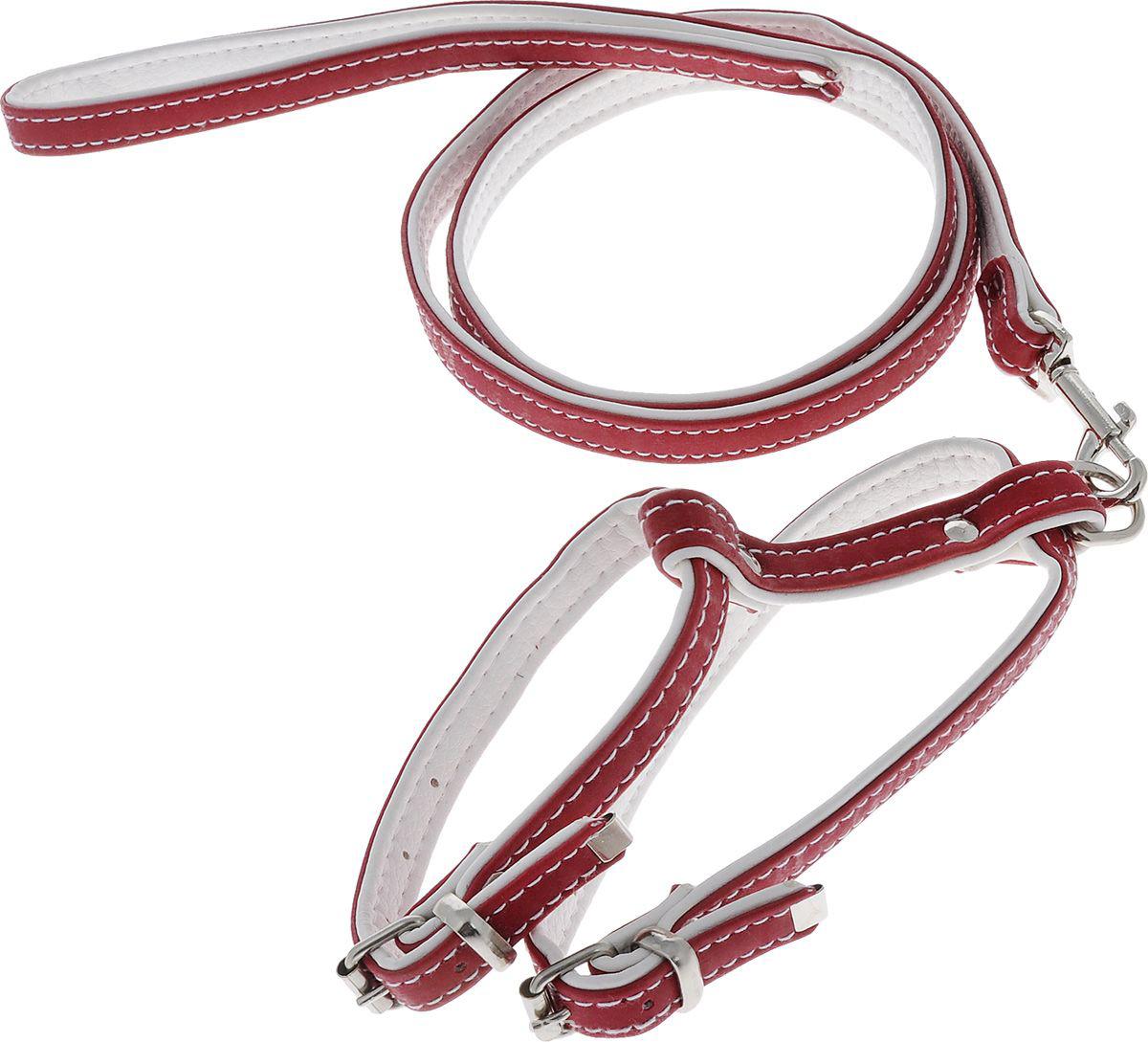 комплект 15(пов.12+шл.15) красный кт15к Kormberi.ru магазин товаров для ваших животных