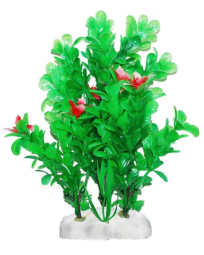 Уют Растение аквариумное 20-22 см, Бакопа с красными цветами ВК413 Kormberi.ru магазин товаров для ваших животных