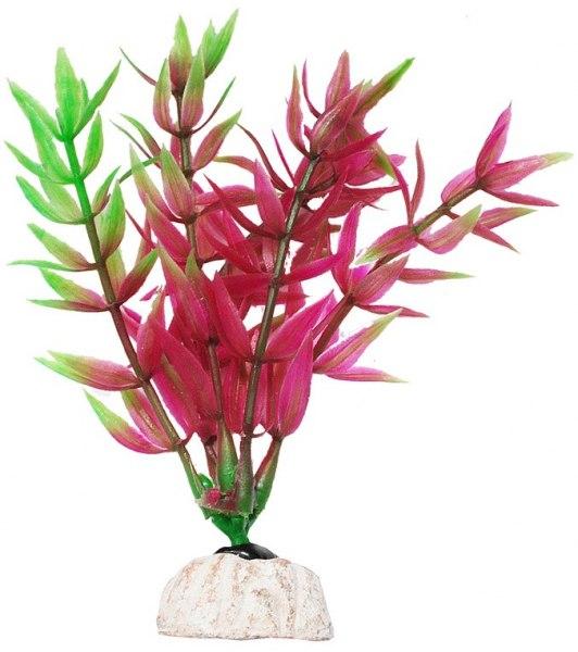 Уют Растение аквариумное 44 см, Гетерантера остролистная ВК607 Kormberi.ru магазин товаров для ваших животных