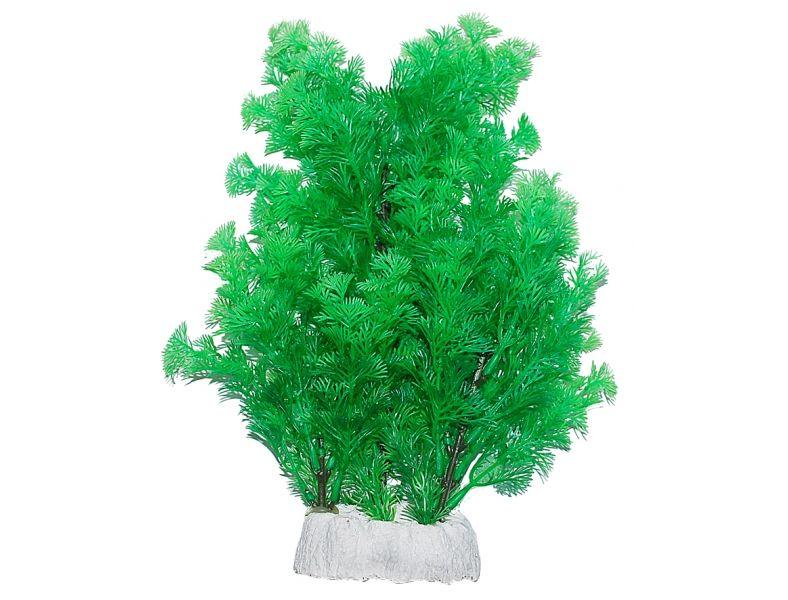 Уют Растение аквариумное 24-32 см, Амбулия ВК513 Kormberi.ru магазин товаров для ваших животных
