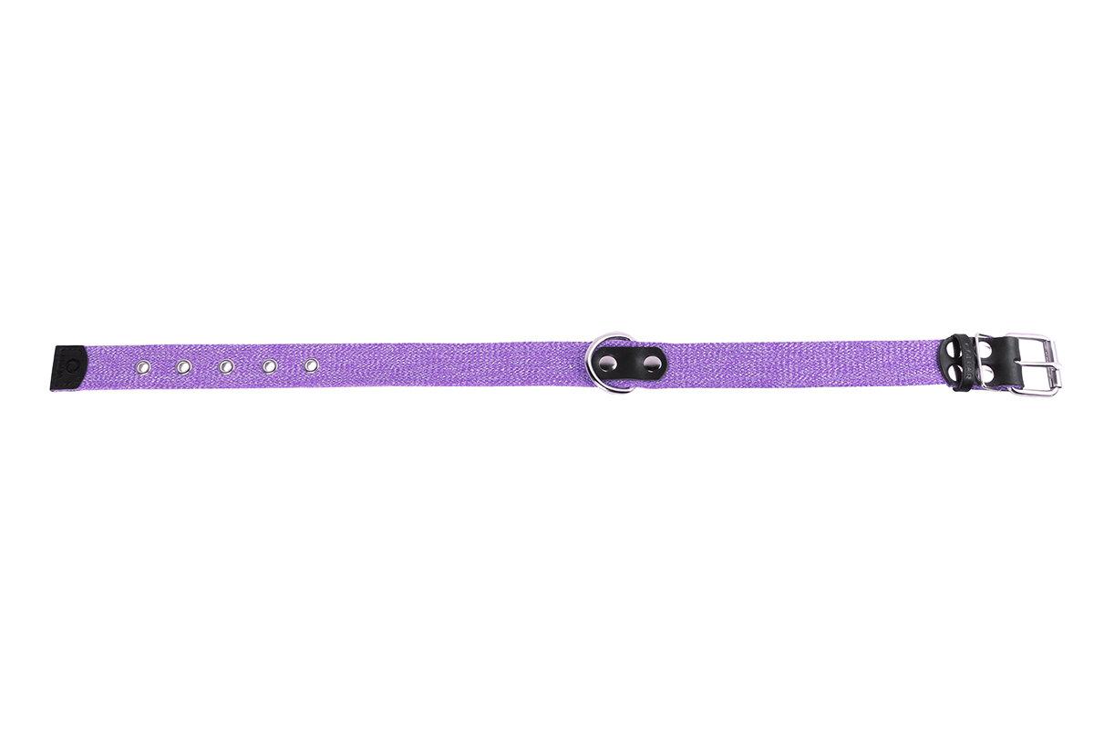"""Collar Ошейник брезент х/б тесьма """"CoLLaR"""" (ширина 25мм, длина 41-53см) фиолетовый 02629 Kormberi.ru магазин товаров для ваших животных"""
