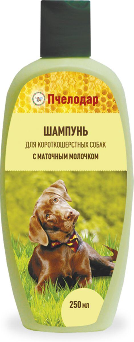 Пчелодар Шампунь с маточным молочком для короткошерстных собак (Пчелодар) 250 мл Kormberi.ru магазин товаров для ваших животных