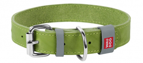 Collar Ошейник WAUDOG Classic, кожа, металлическая пряжка (ширина 15 мм, длина 27-36 см) салатовый 02075 Kormberi.ru магазин товаров для ваших животных