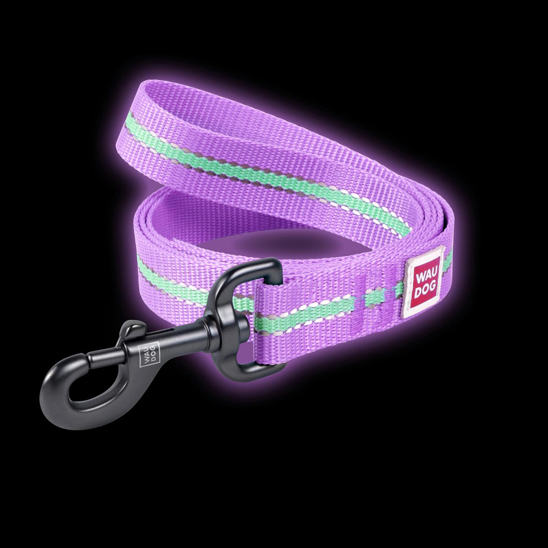 Collar Поводок WAUDOG Nylon светонакопительный (ширина 15 мм, длина 122см) фиолетовый 45669 Kormberi.ru магазин товаров для ваших животных