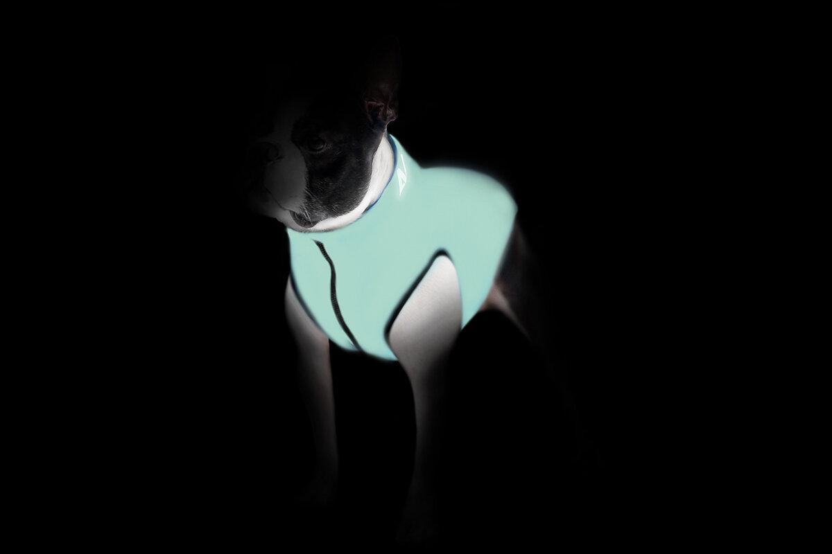 Collar Курточка двухсторонняя светящаяся AiryVest Lumi, размер S 40, салатово-голубая 2248 Kormberi.ru магазин товаров для ваших животных