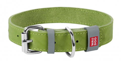 Collar Ошейник WAUDOG Classic, кожа, метал. пряжка (ширина 12 мм, длина 21-29 см) салатовый 02025 Kormberi.ru магазин товаров для ваших животных