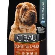 Farmina CIBAU (12кг) д/с средн. крупн. чувствит. пищ-е Ягнёнок (lamb) Sensitive Medium Max Kormberi.ru магазин товаров для ваших животных