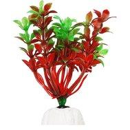 Уют Растение аквариумное 10 см, Гемиантус красно-зеленый 0,02кг ВК108 Kormberi.ru магазин товаров для ваших животных