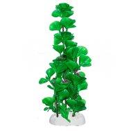 Уют Растение аквариумное 22-24 см, Щитолистник с фиолетовыми цветами ВК803 Kormberi.ru магазин товаров для ваших животных
