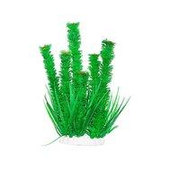 Уют Растение аквариумное 44 см, Элодея курчавая ВК605 Kormberi.ru магазин товаров для ваших животных