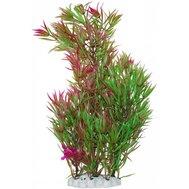 Уют Растение аквариумное 44 см, Гетерантера зелено-фиолетовая ВК604 Kormberi.ru магазин товаров для ваших животных