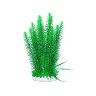 Уют Растение аквариумное 44 см, Элодея густолистная ВК608 Kormberi.ru магазин товаров для ваших животных