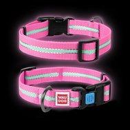 Collar Ошейник WAUDOG Nylon светонакопительный (ширина 20 мм, длина 24-40см)  розовый 45637 Kormberi.ru магазин товаров для ваших животных